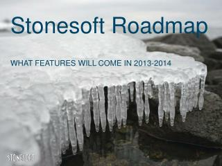 Stonesoft Roadmap