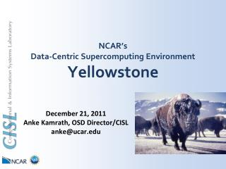 NCAR's  Data-Centric Supercomputing  Environment Yellowstone