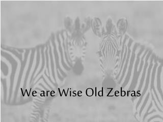We are Wise Old Zebras