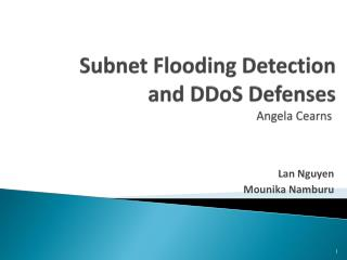 Subnet Flooding Detection  and  DDoS  Defenses                                Angela  Cearns