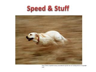 Speed & Stuff