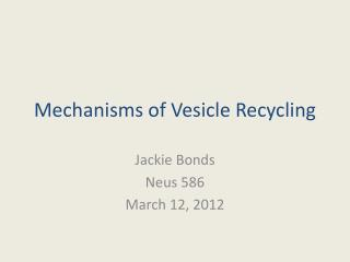 Mechanisms of Vesicle Recycling