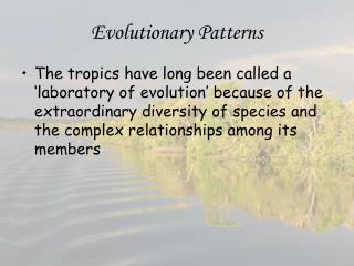 Evolutionary Patterns