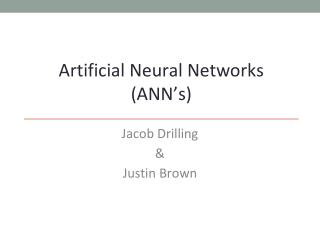 Artificial Neural Networks  (ANN's)