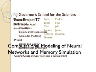 Computational Modeling of Neural Networks and Memory Simulation