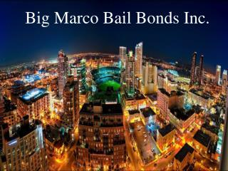 Expert Bail Bonds Services