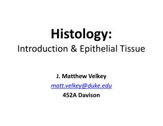 Histology: Introduction & Epithelial Tissue