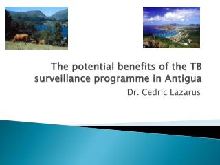 The potential benefits of the TB surveillance programme in Antigua