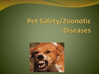 Pet Safety/Zoonotic Diseases