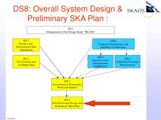 DS8: Overall System Design & Preliminary SKA Plan :