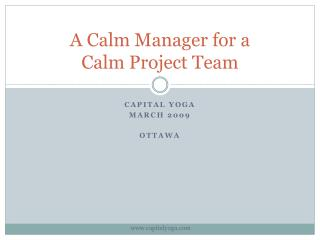 A Calm Manager for a Calm Project Team