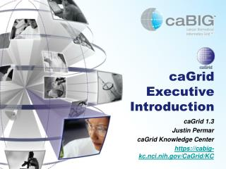 caGrid Executive Introduction