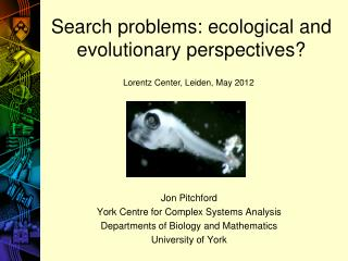 Search problems: ecological and  evolutionary perspectives?