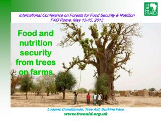 International Conference on Forests for Food Security & Nutrition FAO Rome, May 13-15, 2013