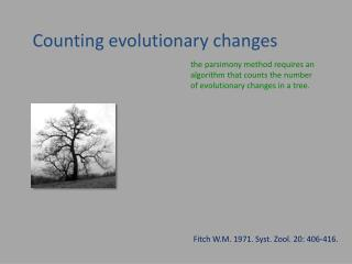 Counting  evolutionary  changes
