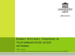 Energy efficiency strategies in telecommunication access networks