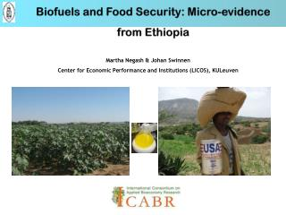 Biofuels and Food Security: Micro-evidence from Ethiopia