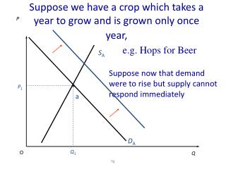 Suppose we have a crop which takes a year to grow and is grown only once  year,