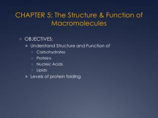 CHAPTER 5: The Structure & Function of Macromolecules