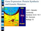 Gene Expression: Protein Synthesis and Genetic Mutation