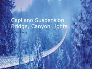 Capilano Suspension Bridge, Canyon Lights