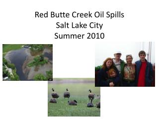 Red Butte Creek Oil Spills Salt Lake City Summer 2010
