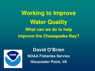 Working to Improve  Water Quality  What can we do to help improve the Chesapeake Bay?