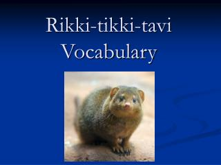 Rikki Tikki Tavi Vocabulary