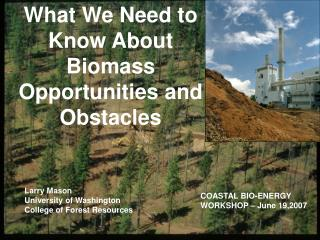 What We Need to Know About Biomass Opportunities and Obstacles