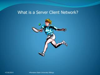 What is a Server Client Network?