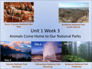 Unit 1 Week 3  Animals Come Home to Our National Parks