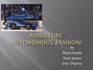 Miniature Autonomous Zamboni