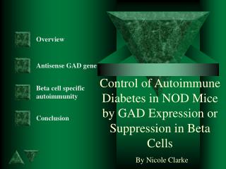 Control of Autoimmune Diabetes in NOD Mice by GAD Expression or Suppression in Beta Cells