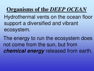 Organisms of the  DEEP OCEAN