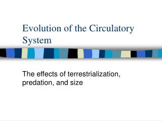 Evolution of the Circulatory System