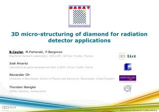 3D micro-structuring of diamond for radiation detector applications