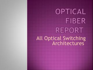 Optical Fiber Report