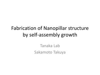 Fabrication of  Nanopillar  structure by self-assembly growth
