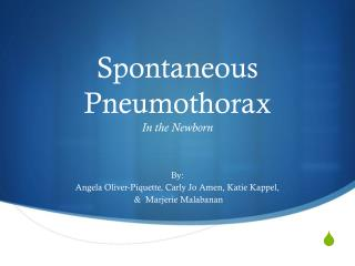 Spontaneous Pneumothorax In the Newborn