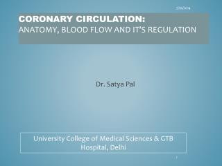Coronary circulation:  anatomy, blood flow and it's regulation