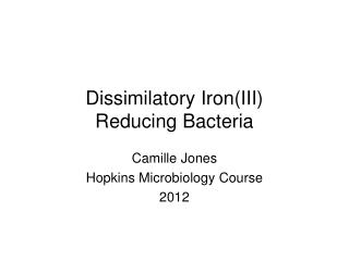 Dissimilatory  Iron(III) Reducing Bacteria