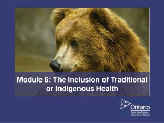Module 6: The Inclusion of Traditional or Indigenous Health