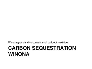 Carbon sequestration  winona