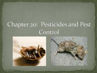 Chapter 20:  Pesticides and Pest Control