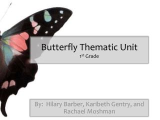 Butterfly Thematic Unit 1 st  Grade