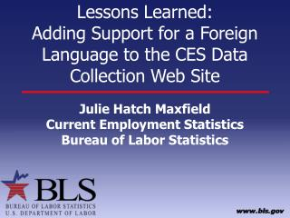 Lessons Learned: Adding Support for a Foreign Language to the CES Data Collection Web Site