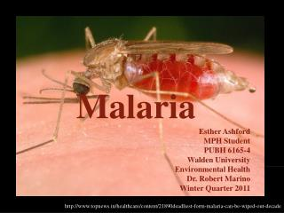 Malaria Esther Ashford MPH Student PUBH 6165-4 Walden University Environmental Health