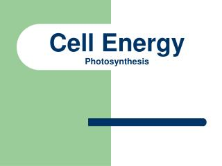 Cell Energy Photosynthesis