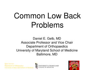 Common Low Back Problems