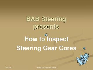 BAB Steering presents